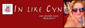 Cynthia Troyer In Like Cyn YouTube