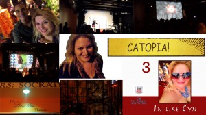 In Like Cyn 3 Catopia Cynthia Troyer