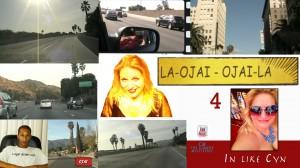In Like Cyn 4 LA-OJAI Cynthia Troyer