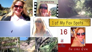 Cynthia Troyer In Like Cyn 16 Fav Spot